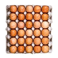 Bild von Eier